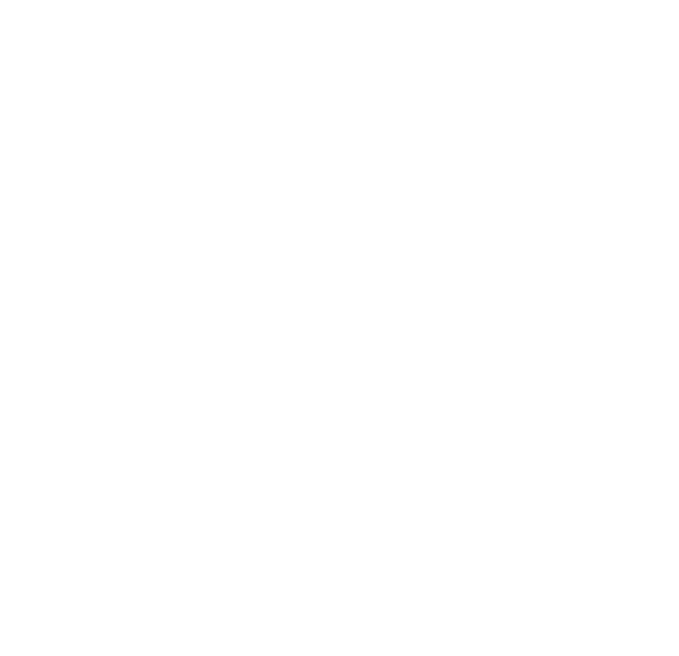 Fortia SEO logo